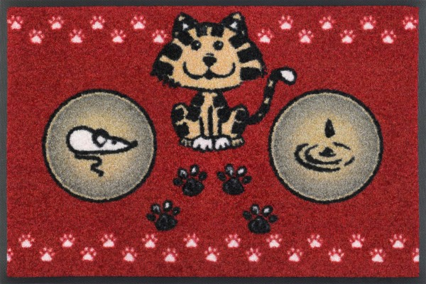 Katzenmahlzeit rot