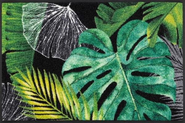 Fußmatte Neoflora, dekorative wash & dry Designmatte, 050 x 075 cm, Draufsicht