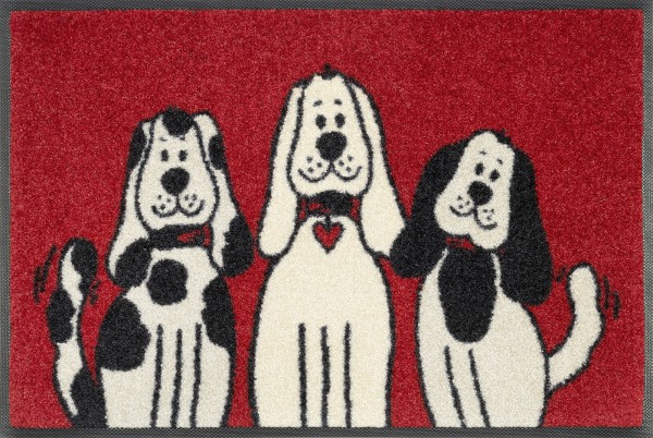 Sauberlaufmatte Three Dogs, wash & dry Design, 40 x 60 cm, Draufsicht