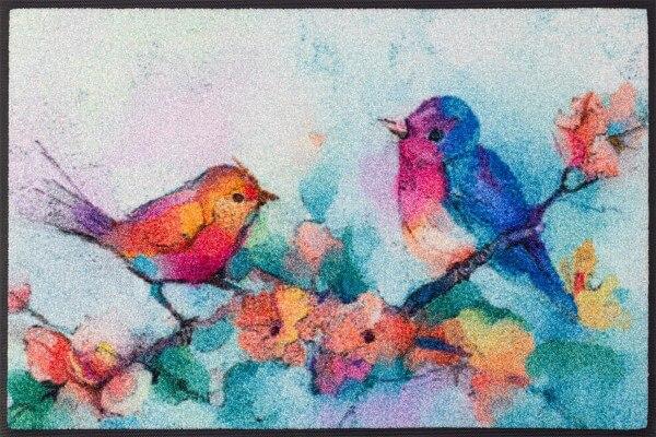 Fußmatte Birdorama, mehrfarbig, 50 x 75 cm, Draufsicht