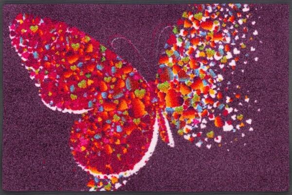 Fußmatte Papallona, Wash & Dry Design Enter & Exit, mehrfarbig, 050 x 075 cm, Draufsicht