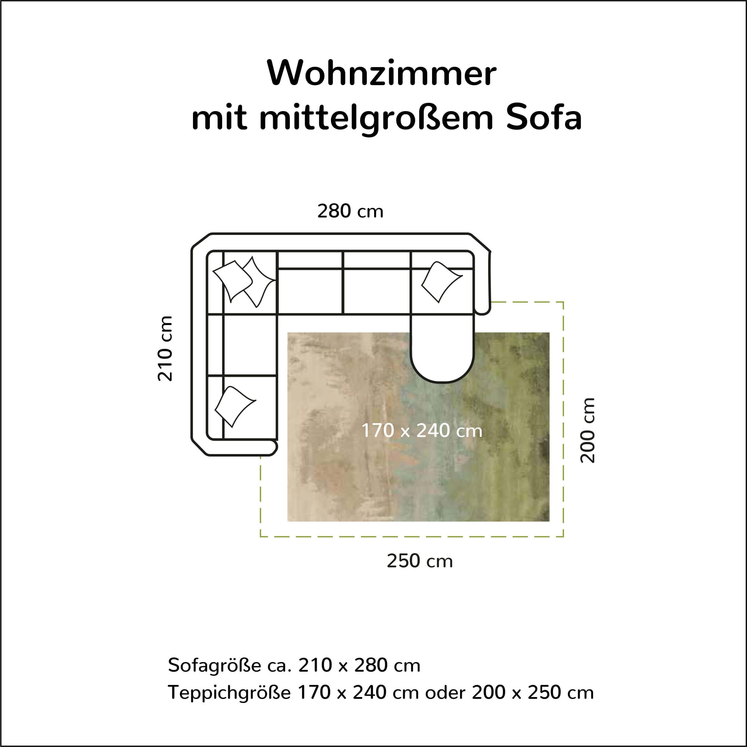 Wohnzimmer mit mittelgroßem Sofa